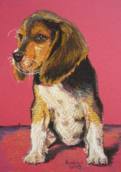 Portrety zwierząt na zamówienie - pies