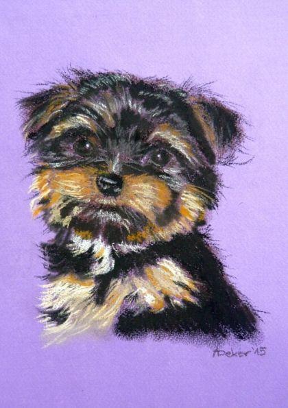 Portrety zwierząt na zamówienie - pies 2